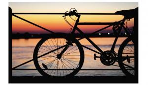 Aumenta el uso de la bicicleta como medio de transporte por la pandemia