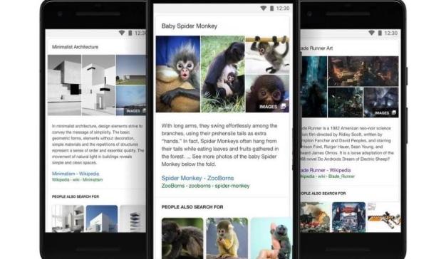 google-se-tik-tokiza-y-hace-pruebas-con-videos-cortos-en-su-app