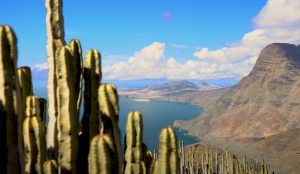 Iberia Express y el Patronato de Turismo de Gran Canaria venden al alimón las excelencias turísticas de la isla