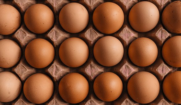 ¡Huevos, necesitamos más huevos, sector!