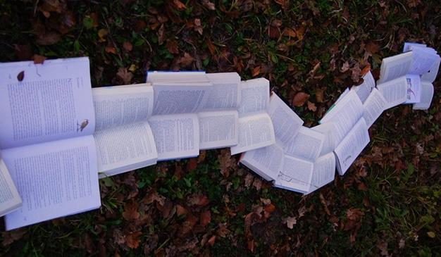 libros confinamiento