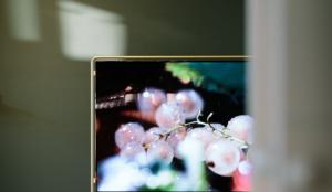 La televisión en octubre: aumenta el consumo y presión publicitaria
