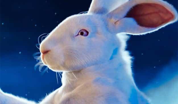 Conejo de Pascua Lacta