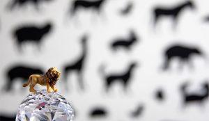 Cannes Lions planta cara a la pandemia y confirma que se celebrará presencialmente en junio