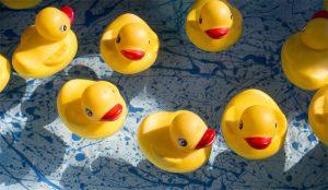 Los CMOs se lanzan a la piscina de 2021 nadando y guardando la ropa