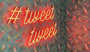 Twitter se suma al negocio de las newsletter de pago tras la compra de Revue