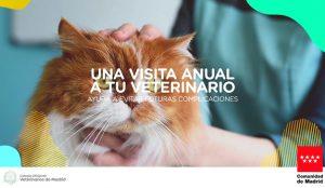 AMT Comunicación lanza la nueva campaña de concienciación de salud animal de la Comunidad de Madrid