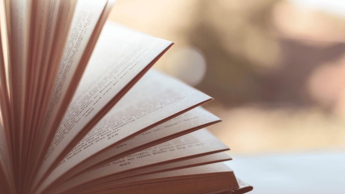dia del libro lectura creativos