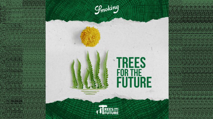 Smoking® ayuda a Trees for the Future® a plantar 54 millones árboles en el África Subsahariana