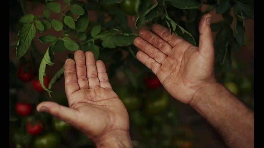 Alvalle lanza un homenaje a los agricultores y el origen de su gazpacho con su nuevo spot