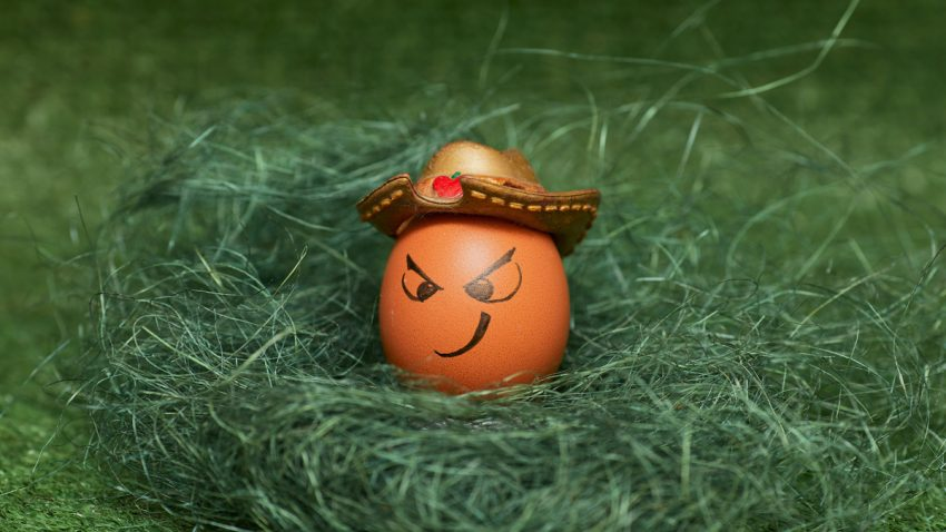 Creatividad e innovación: ¿qué fue antes, el huevo o la gallina?