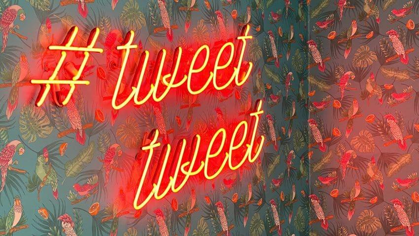 Twitter Blue, el servicio de pago que por 2,99 dólares te permitirá deshacer y coleccionar tuits