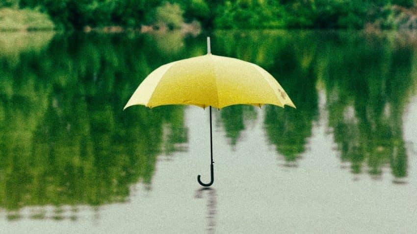 Experiencia y contenidos, un binomio vencedor bajo el paraguas del propósito