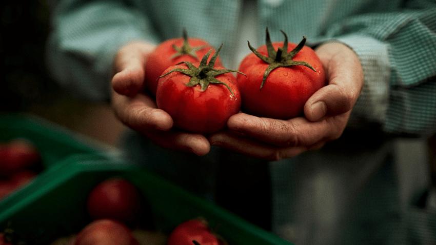 Alvalle desvela los secretos de su icónica receta en el Día del Gazpacho con motivo de su 30 aniversario