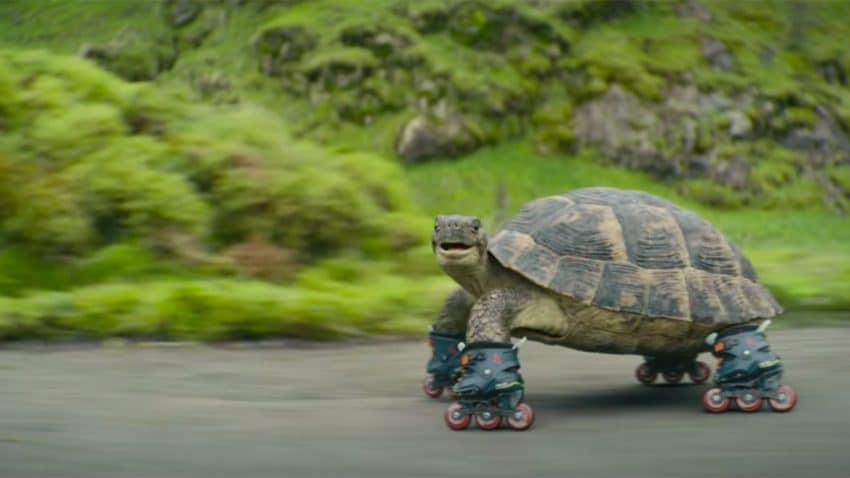 La adorable tortuga en patines de este spot te convencerá de viajar más en tren
