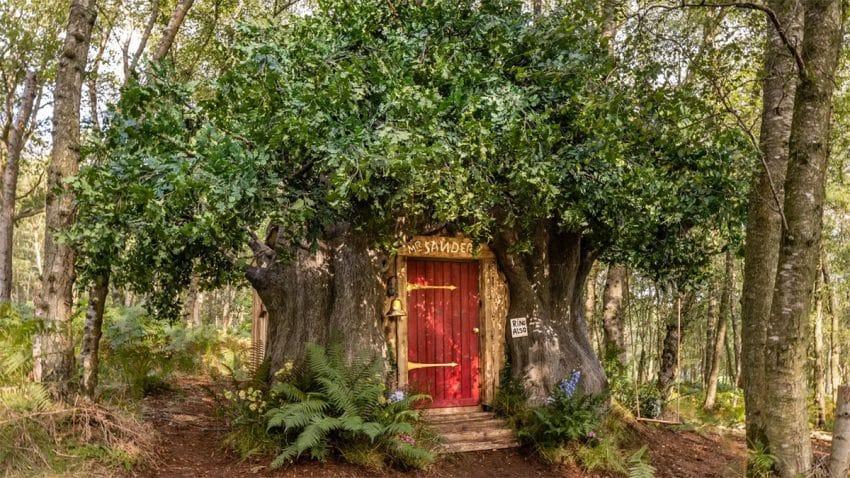 Airbnb te invita a disfrutar de una velada de cuento en la casa-árbol de Winnie the Pooh
