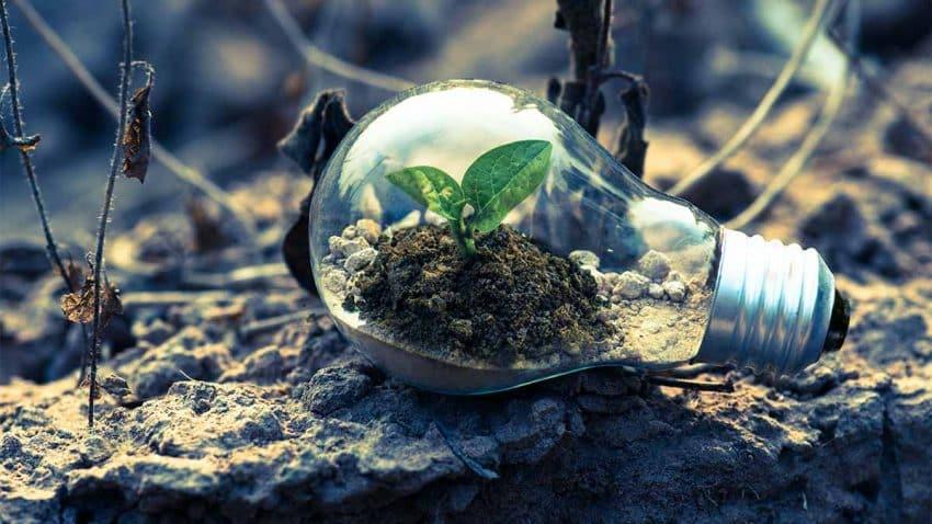 La sostenibilidad, ¿la llave maestra de las marcas para impulsar la recuperación?