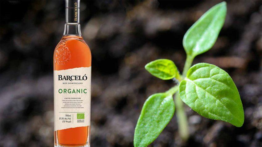 El proyecto de sostenibilidad de Ron Barceló: Su primer ron 100% orgánico